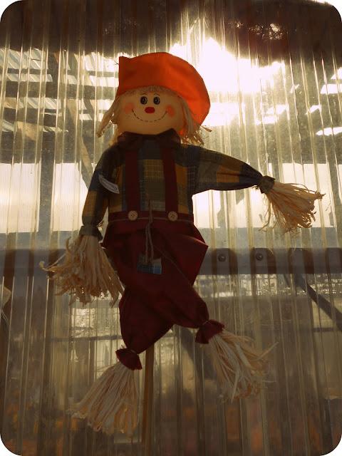 Fall Harvest Scarecrow