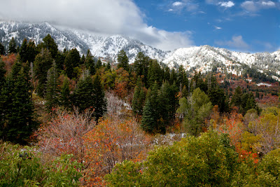 Fall Colors of Ogden Valley, Utah