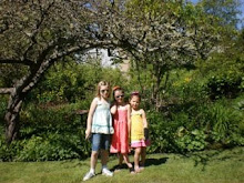 Katie, Isabella and Macey Visit My Garden