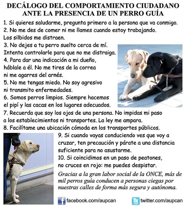 Decálogo del comportamiento ciudadano ante la presencia de un Perro Guía