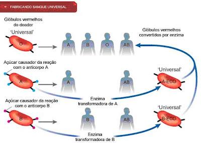 Exame grupo sanguineo