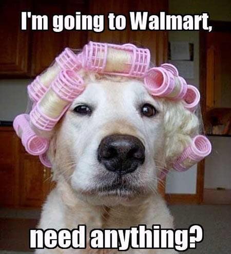I'm Going To Walmart