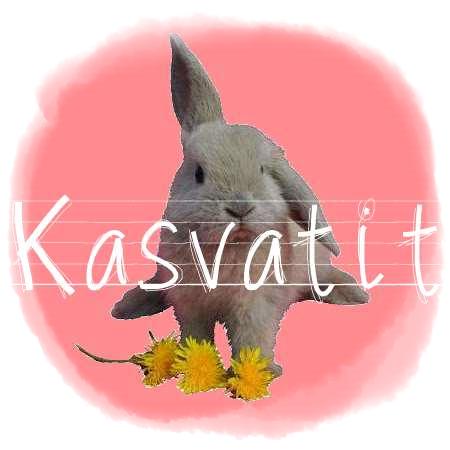 http://rabbitrubbish.blogspot.fi/p/kasvatit.html