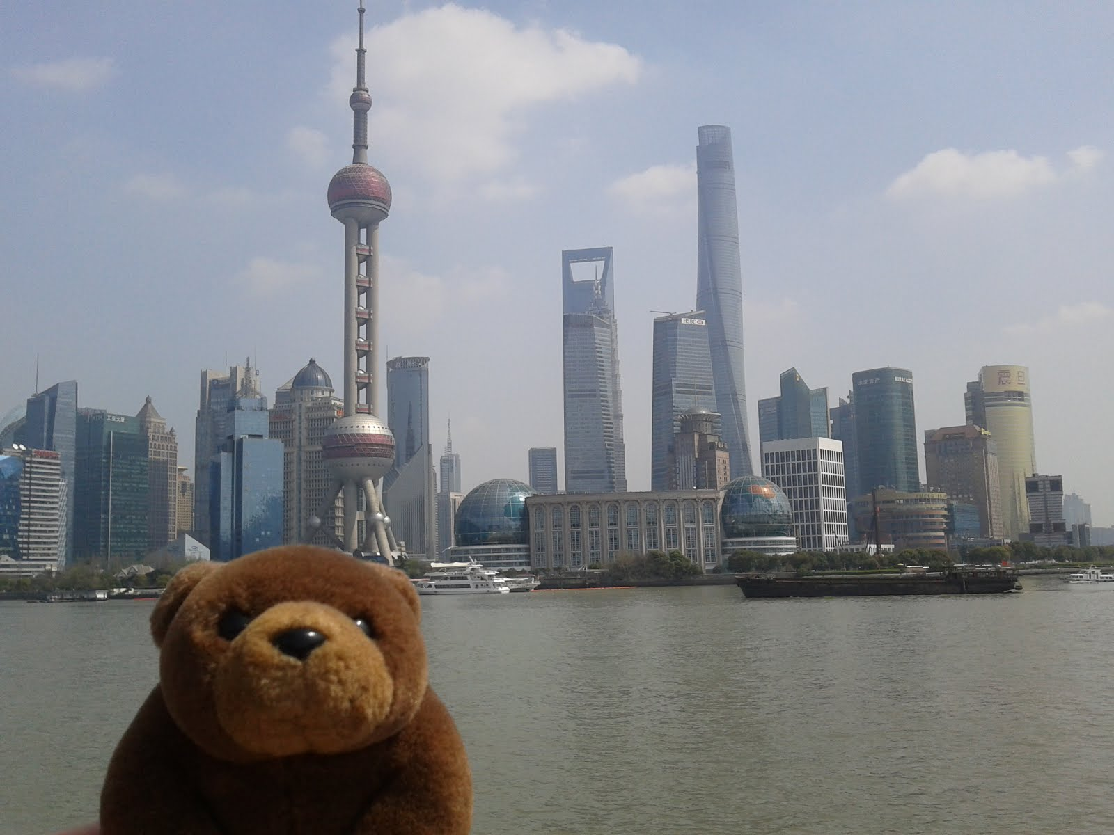 Teddy in Shanghai