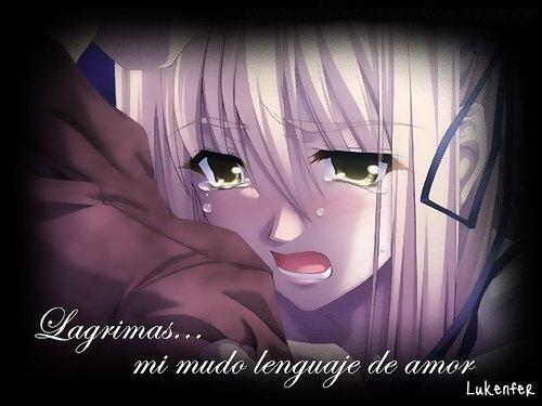 Imagenes con Frases de Amor - Frases de Amor con Imagenes