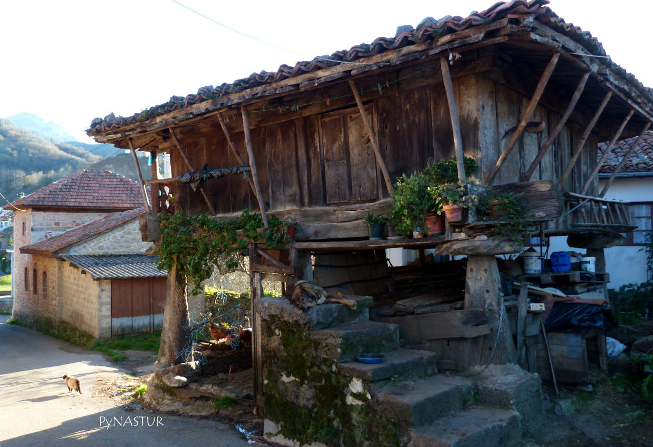 Hórreo en el pueblo de Pen - Amieva