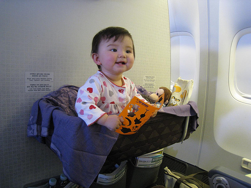 Bassinet In Airplane3