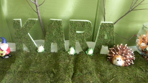 Moss Crafts, Woodland Party Moss