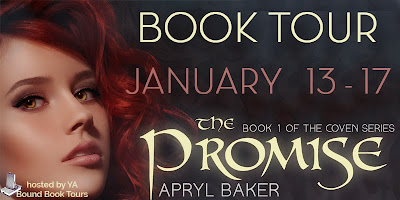 http://yaboundbooktours.blogspot.com/2013/11/book-blitz-sign-up-promise-by-apryl.html