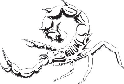 Airbrush Stencil Scorpion Design