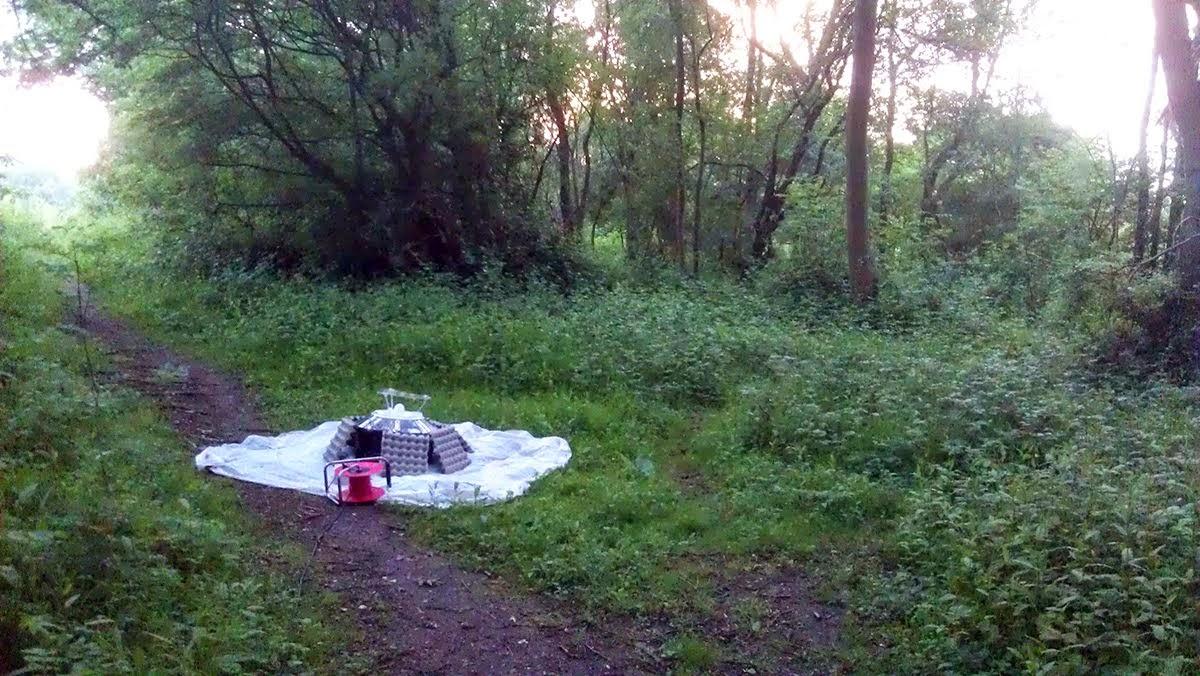 Herts & Essex Moth Blog