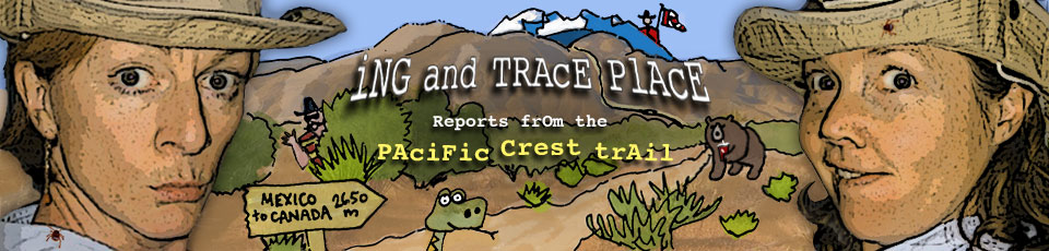 The Ing and Trace Place