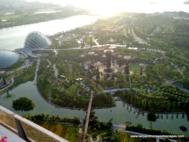 birds eye view of Gardens by the Bay from Sky on 57