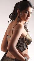Deeksha, seth, sexy, in, saree, hot, gallery