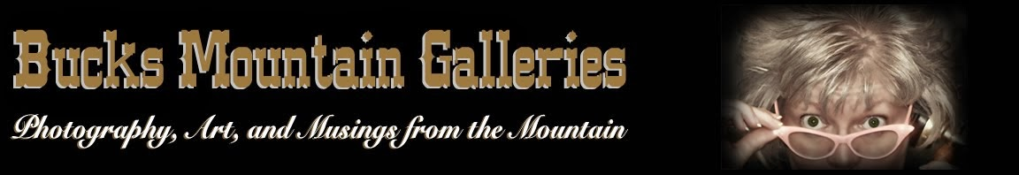 Buck's Mountain Galleries