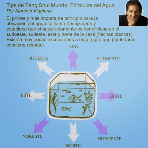 Feng shui en el hogar casas ideas for Plantas que se deben tener en casa segun feng shui