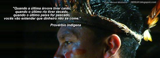 Capa perfil do índio - Homenagem ao dia do Índio.