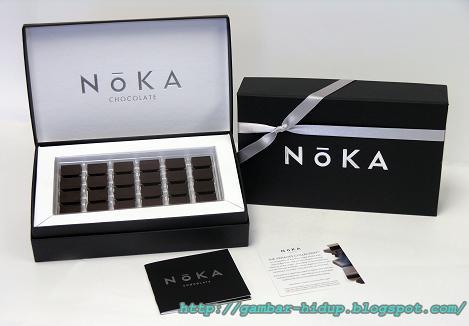 http://2.bp.blogspot.com/-vidwXqh78aw/T-gcWrYmANI/AAAAAAAAEGQ/FMjyKkyHFC4/s1600/noka-chocolate.jpg