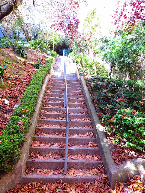 Stairs covered in fall leaves in San Francisco's Russian Hill