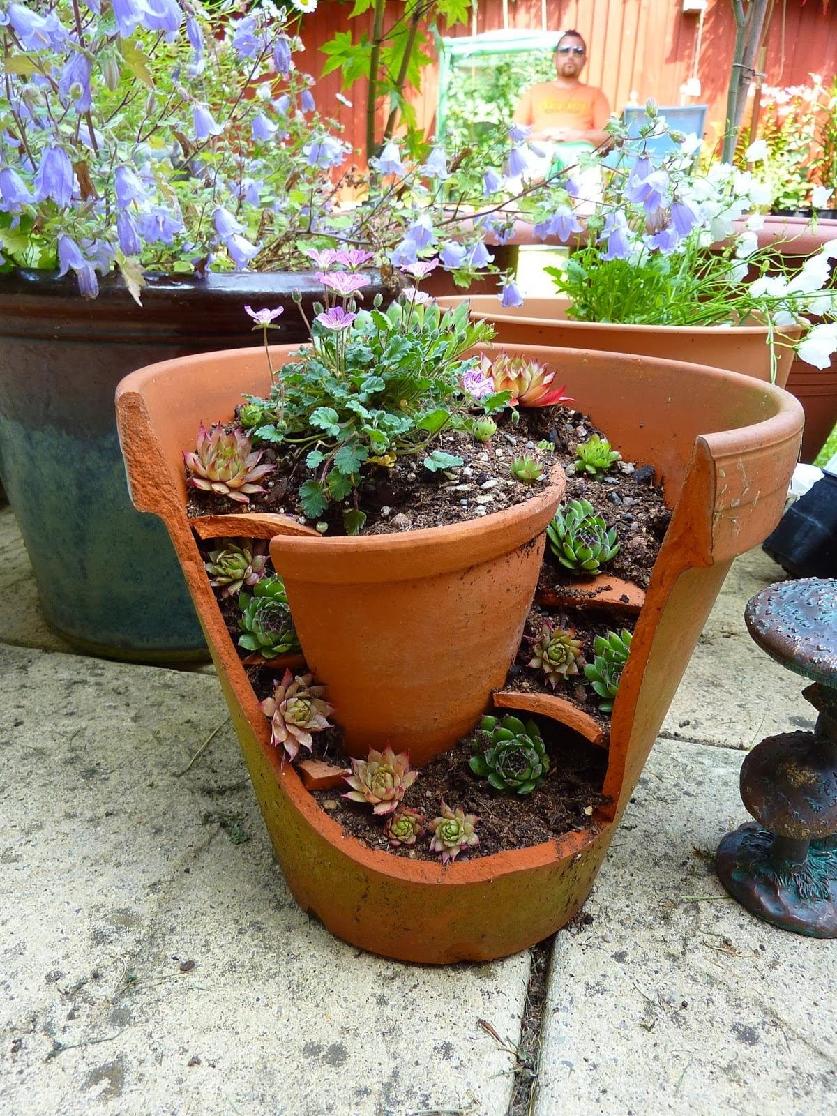 Gardening in pots ideas greenfain garden flower pots ideas workwithnaturefo