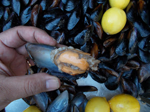 Istanbul street Sea-food  delicacy :-Clam with rice.