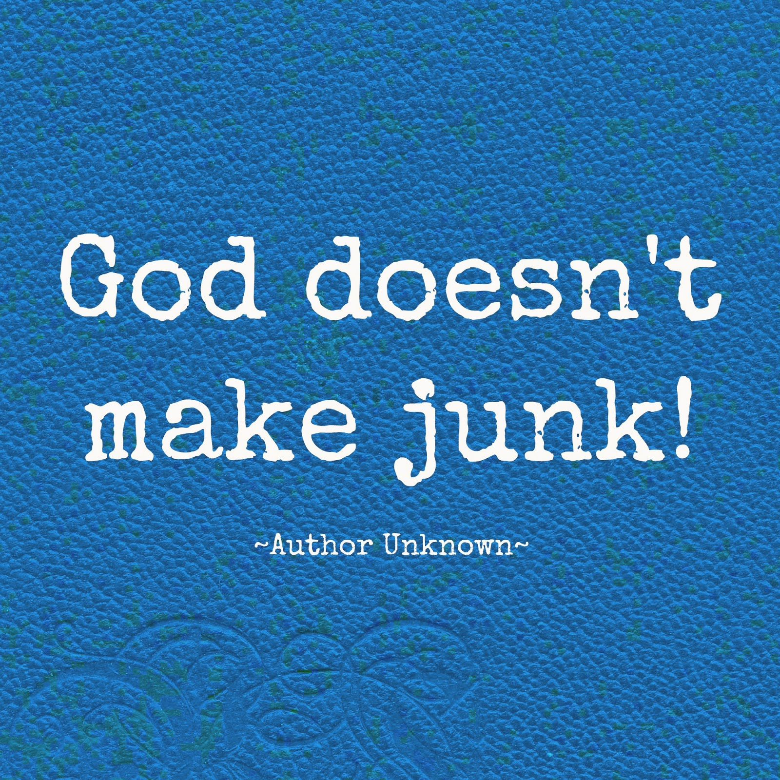 God Doesn't Make Junk Quote