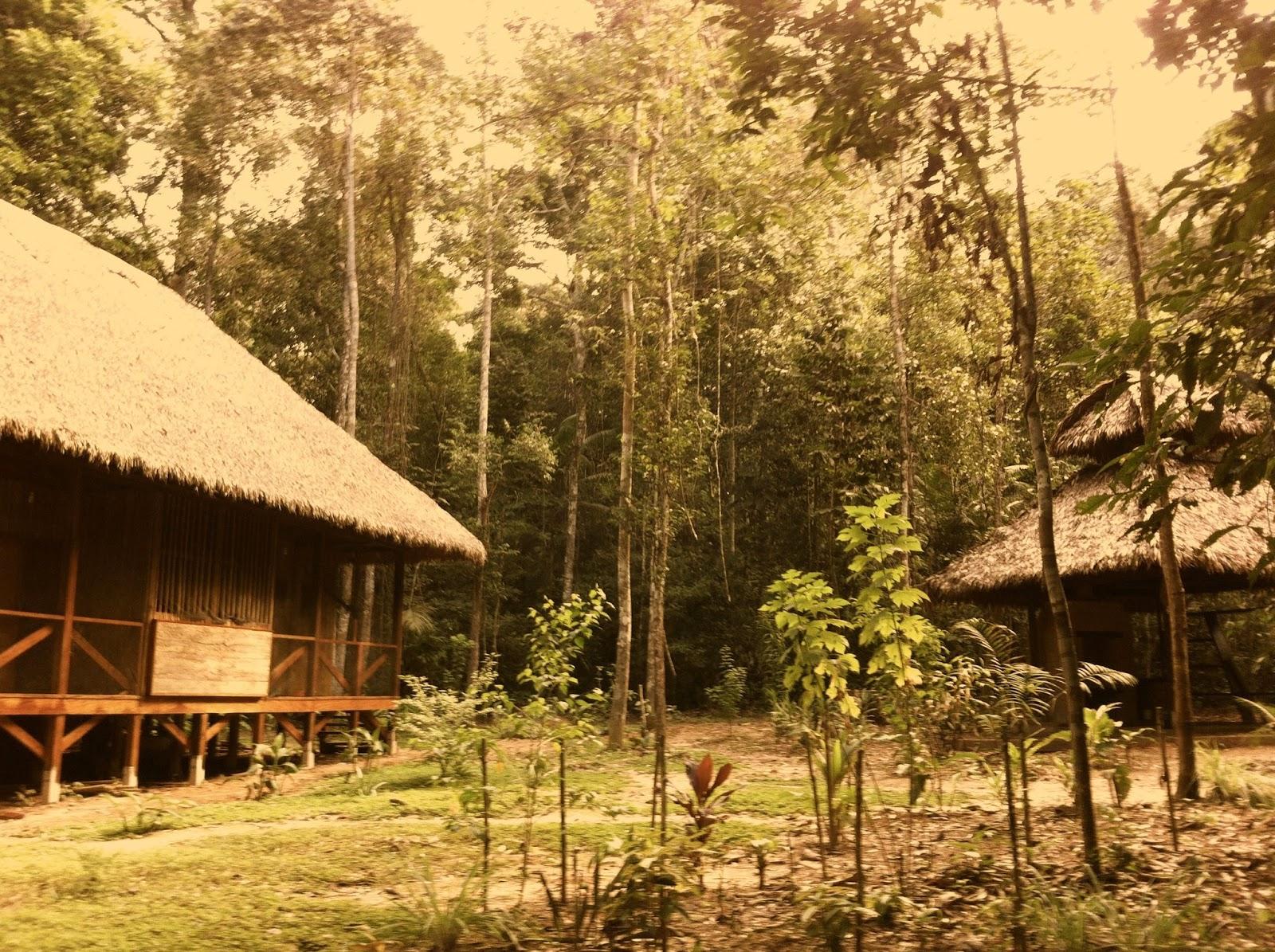 Innovaci n arquitect nica dise o y construcci n amazon - Construccion de bungalows ...