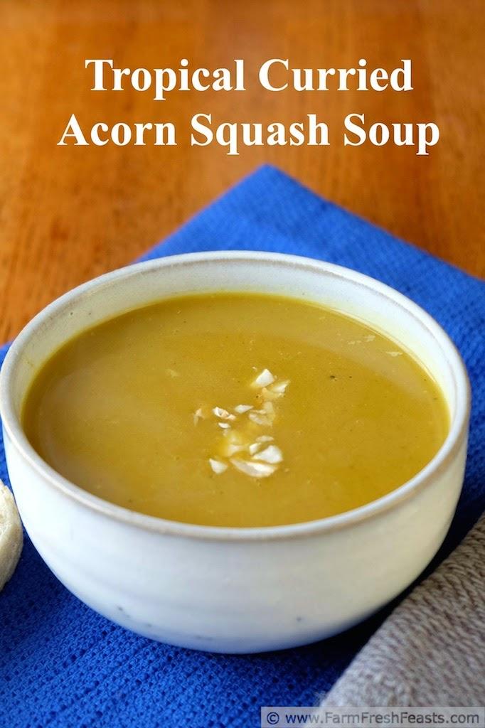 http://www.farmfreshfeasts.com/2014/10/tropical-curried-acorn-squash-soup.html