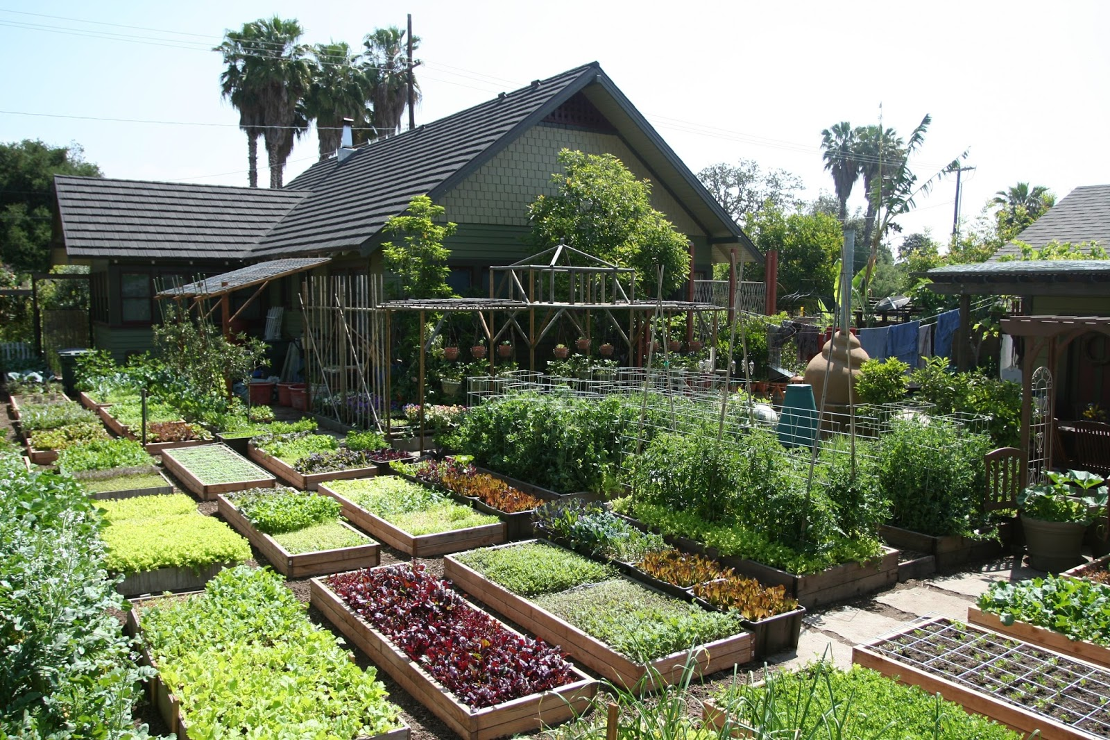 Learn How This Family Grows 6,000 Lbs Of Food on Just 1/10th Acre