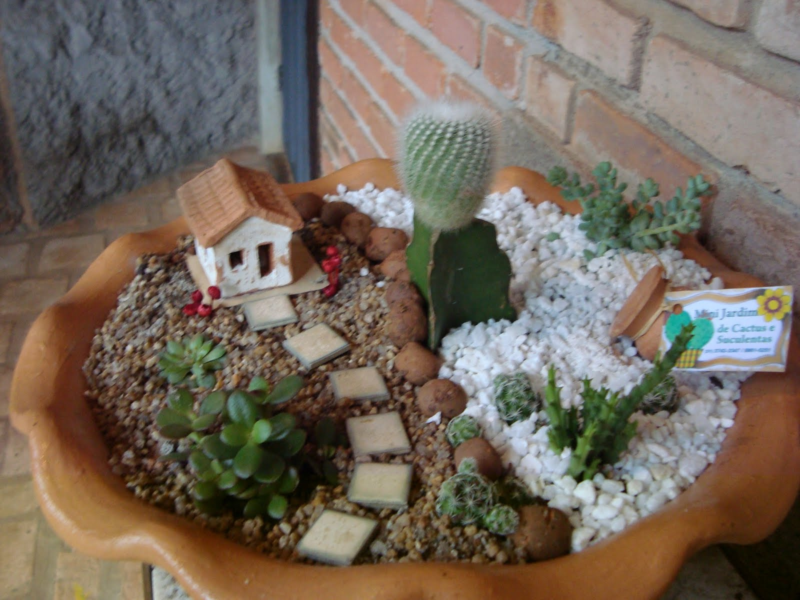 Camila calvet mini jardins - Plantas de exterior faciles de cuidar ...
