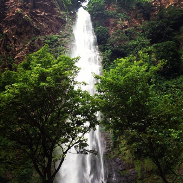 Wli Waterfalls  Maddies Gap Year