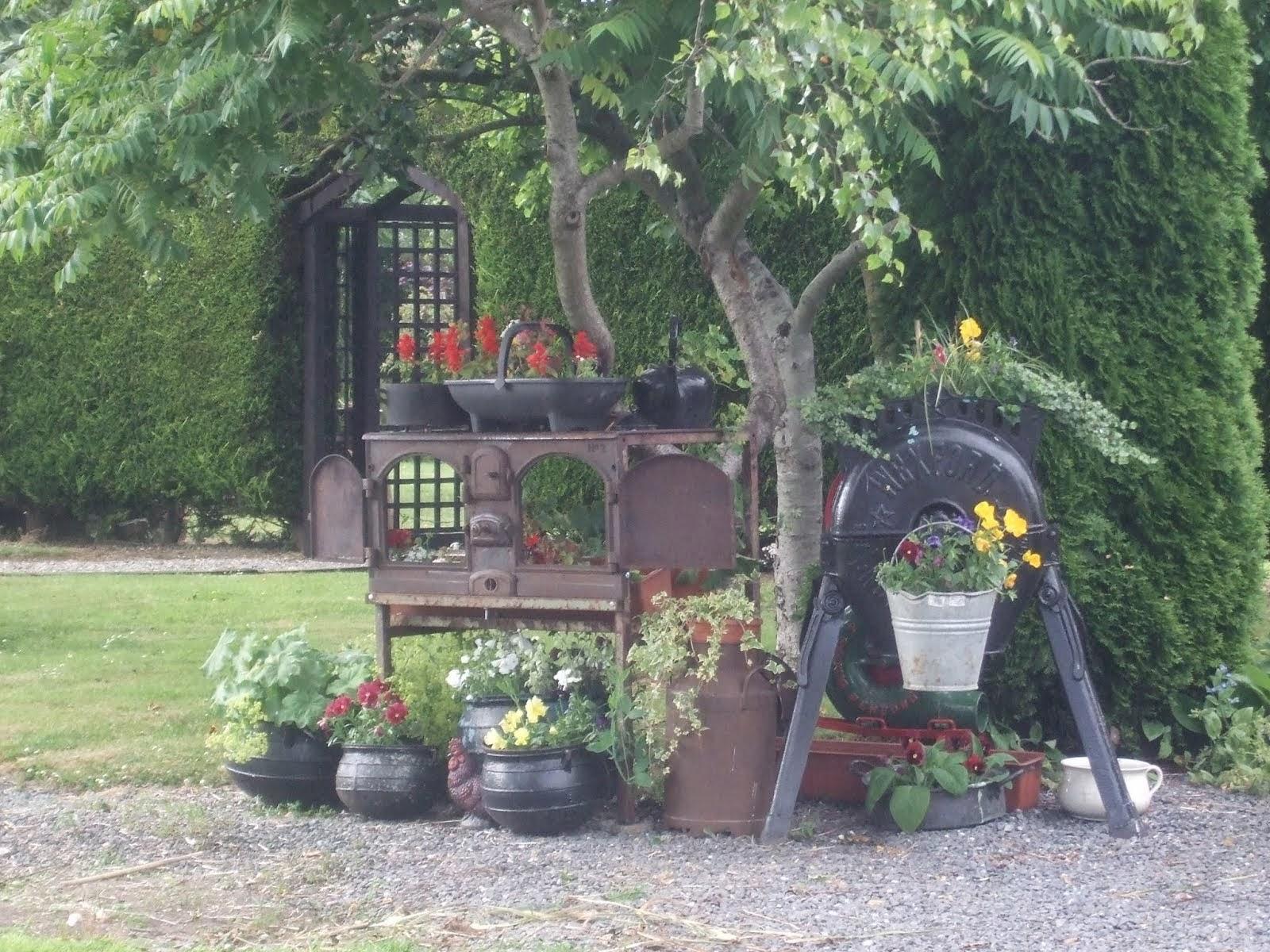 Steam Garden by Ann Glynn