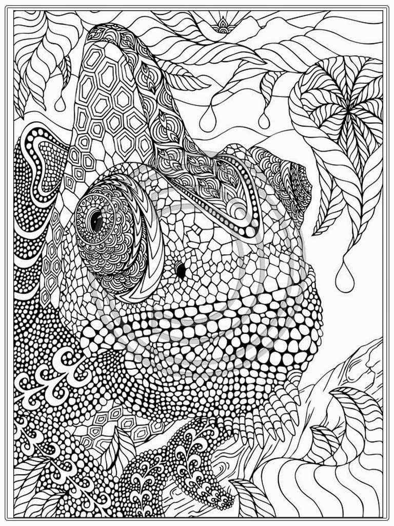 Cartoon Coloring Pages For Adults Printable iguana adult coloring ...