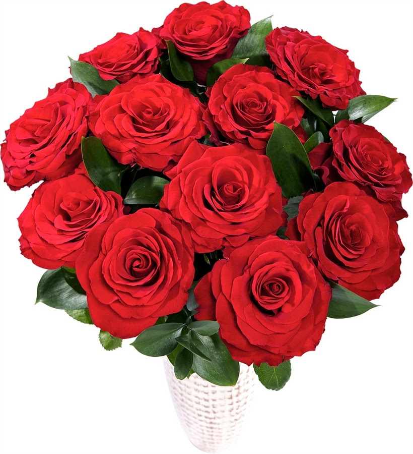 Open your eyes life is beautiful a dozen christmas roses for 12 dozen roses at your door