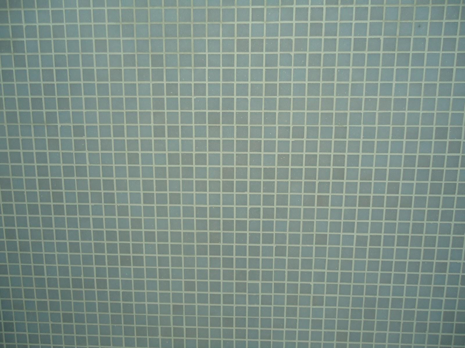 #3E5352 Como se começa uma FAMÍLIA: REVESTIMENTO DA ÁREA DE SERVIÇO 1600x1200 px Banheiros Decorados Com Pastilhas Jatoba 1147