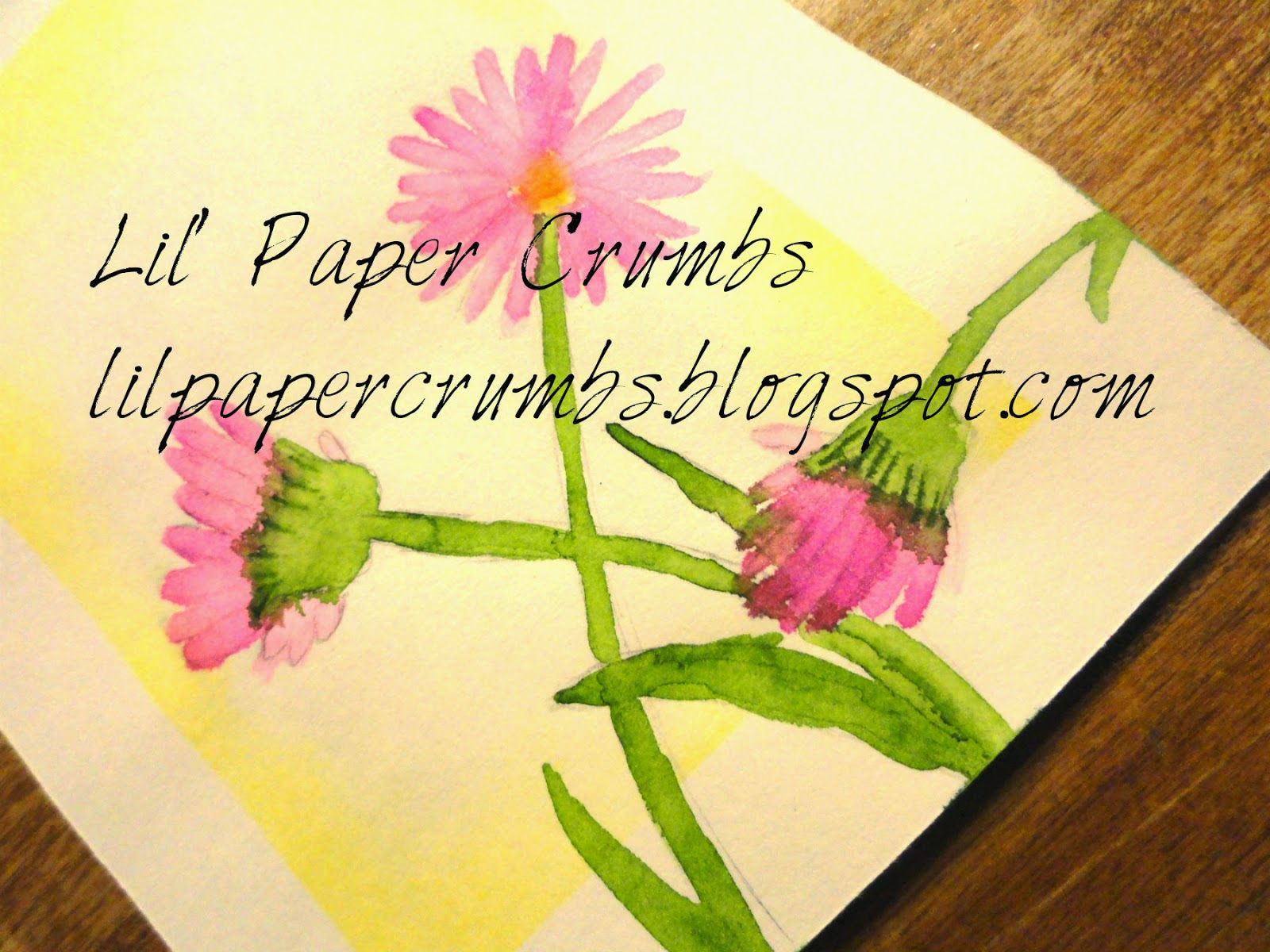 Hand drawn flowers - water color