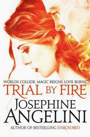 https://www.goodreads.com/book/show/22087268-trial-by-fire
