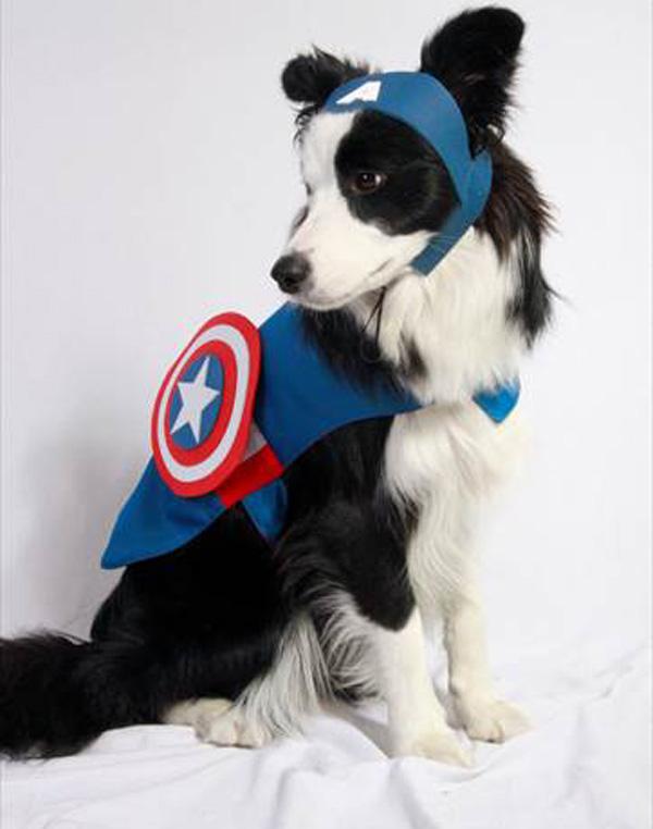 Superhéroes-villanos-última-tendencia-disfraces-para-mascotas