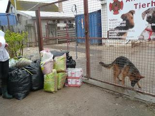 Adományok a Siófoki Állatvédő Alapítványnak