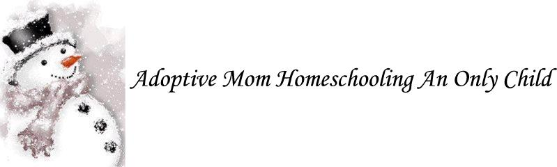 Adoptive Mom Homeschooling An Only Child