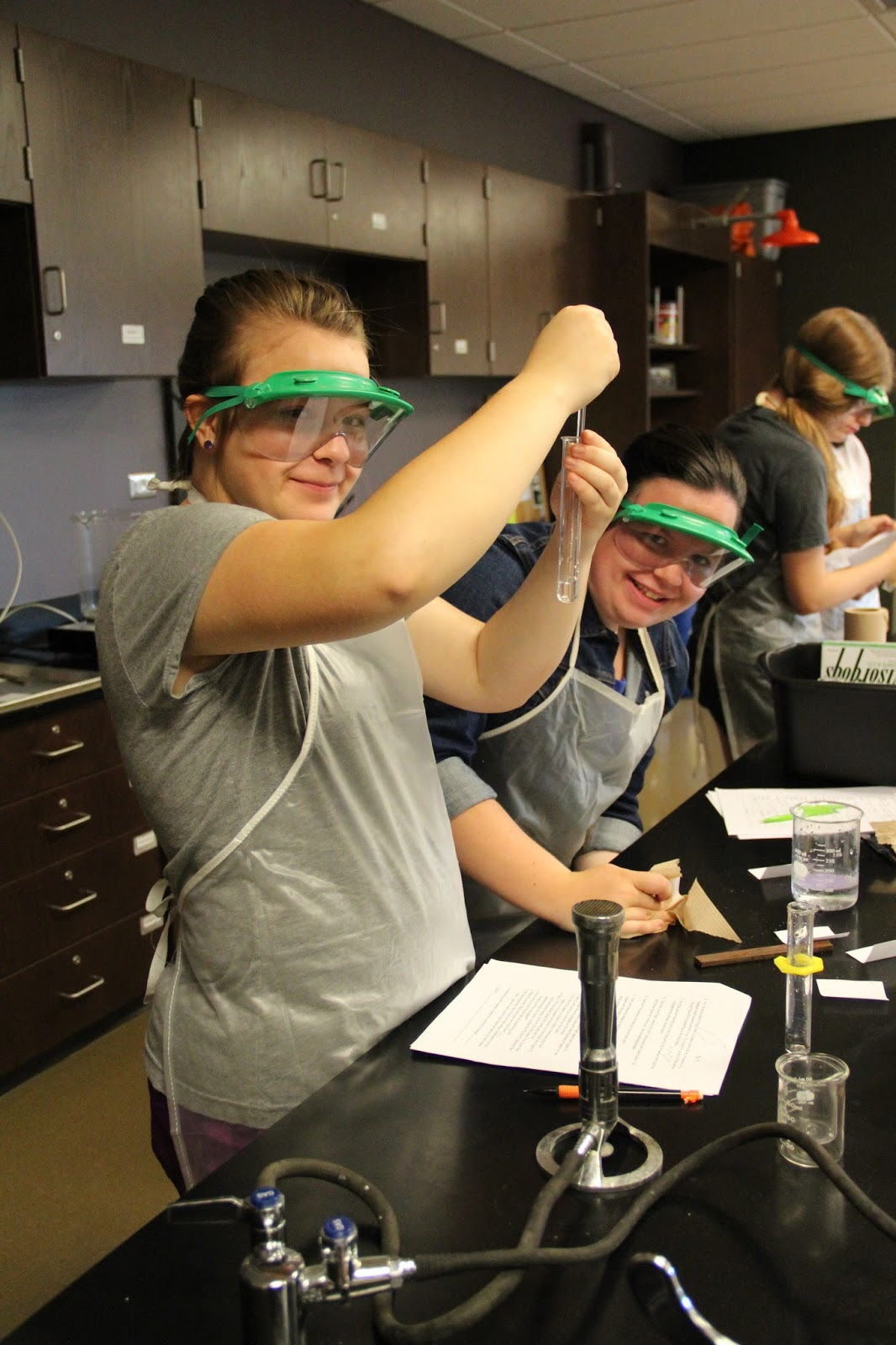 physical and chemical properties lab Physical and chemical properties of matter lab purpose to introduce the student to physical and chemical properties of matter and their use for the identification.