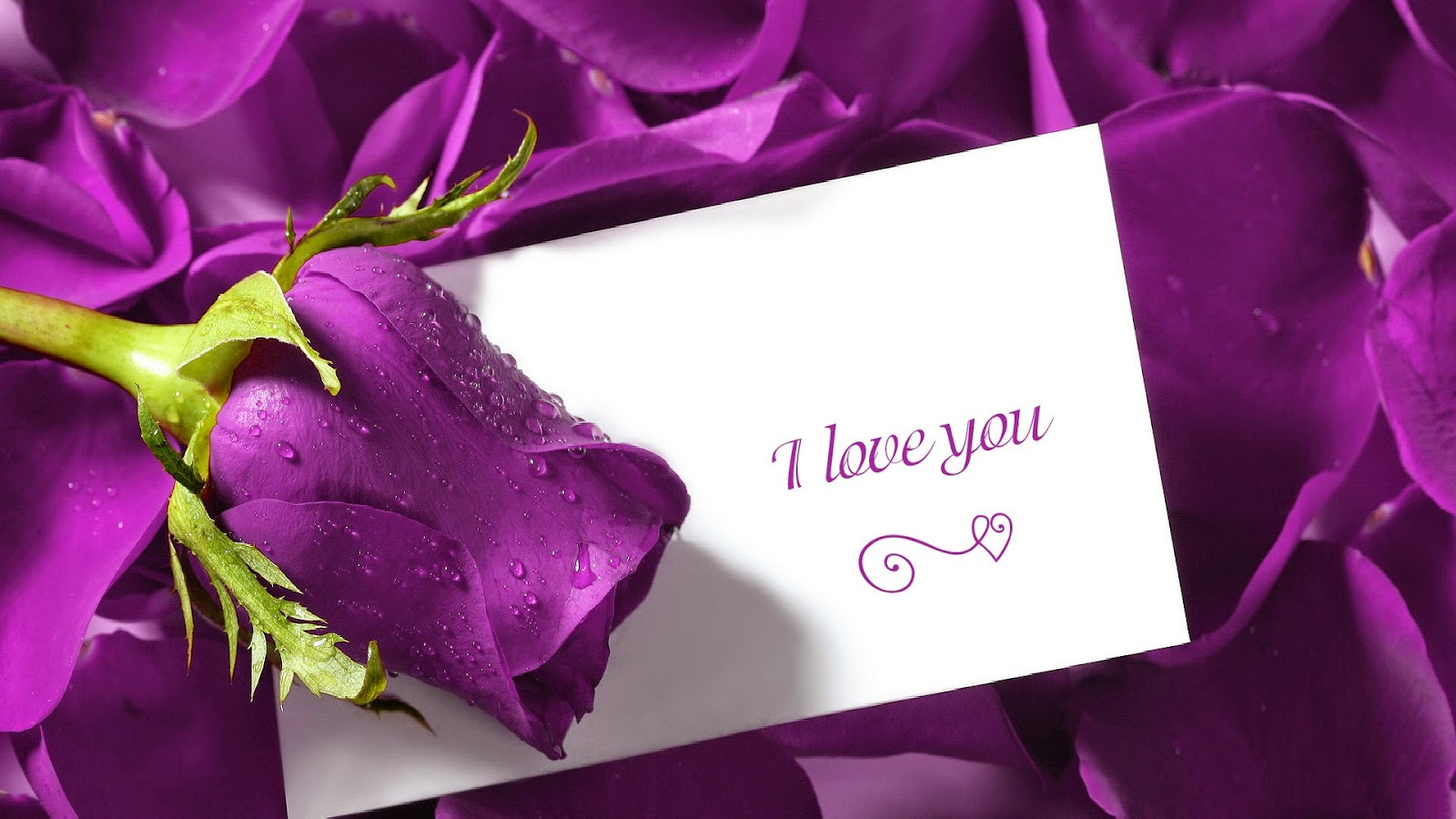 I love you quotes flower