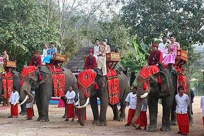 Hochzeit auf dem Rücken eines Elefanten