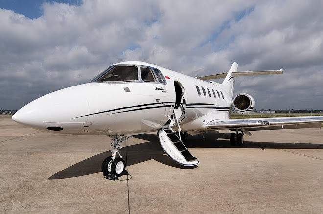 Lion Bizjet - Private Jet