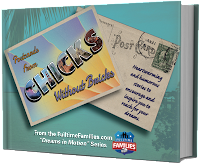 http://www.fulltimefamilies.com/gear/ftf-bookstore-2/postcards-from-chicks-without-bricks/?ap_id=margielundy