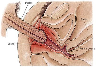 TTCHaving sex 4-5 days before ovulation? Yahoo Answers