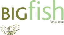 BIGfish Marketing Internship