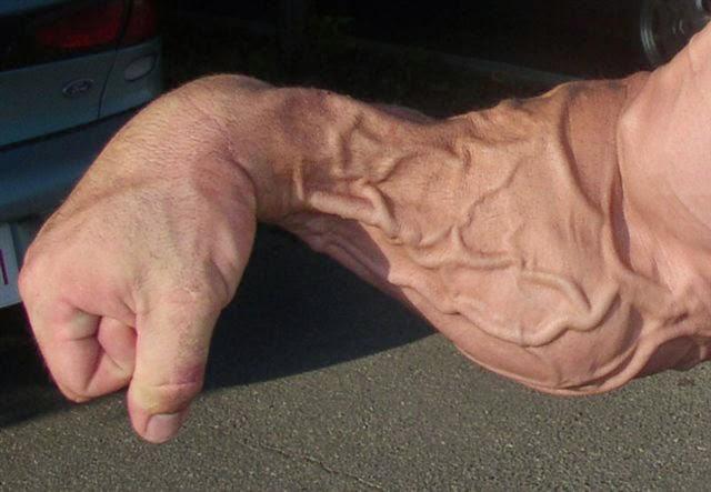 blog do betão vascularização e aumento da testosterona