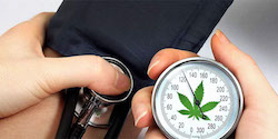 STUDY: CBD Reduces Blood Pressure