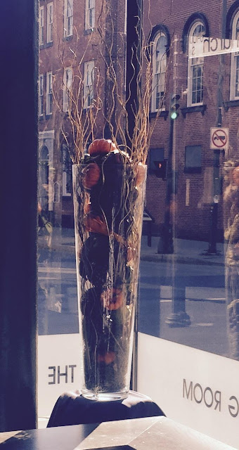loriannmd, lori tauraso, frederick, downtown frederick, fall 2015, flowers, pumpkins, floral arrangements, the tasting room, interior design, fall, hiking, blogger, blogging, instagram, diy